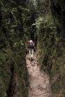 madagascar.corridor.forestier.trek.150
