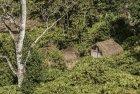 madagascar.corridor.forestier.trek.198