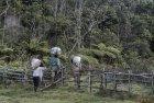 madagascar.corridor.forestier.trek.224