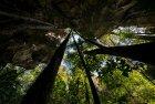 madagascar.trek.tsingy.parc.national.bemaraha.17