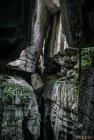 madagascar.trek.tsingy.parc.national.bemaraha.21