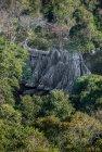 madagascar.trek.tsingy.parc.national.bemaraha.25