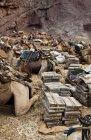 ethiopie.danakil.afar.caravanes.16