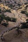 ethiopie.danakil.afar.caravanes.46