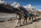 pakistan.baltoro.ski.telemark.tour.k2.gsasherbrum.mitre.trongo.8