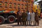 pakistan.camion.bus.peinture.1