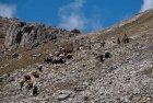 trek.saipal.api.himal.nepal.far.west.11