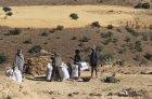 ethiopie.simien.champs.13