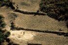 ethiopie.simien.champs.22
