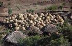 ethiopie.simien.structure.8