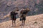 ethiopie.simien.adi.arke.16