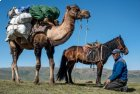 Mongolie : Trek en Kharkhira - Aout 2020