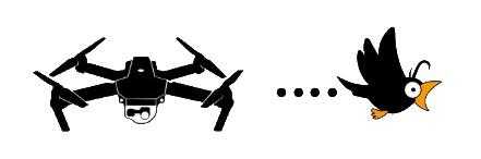 drone.joke