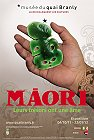 Maori : leurs trésors ont une âme , musée quai Branly