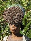 Trek corridor forestier (Madagascar) - Jour 7 Martine