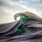 Le photographe Ray Collins, au sommet de la vague...