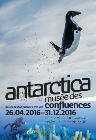 antartica.musa.e.confluence.affiche