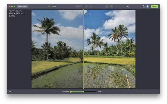 photolemur.interface