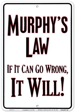 loi.murphy