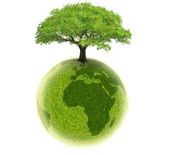 ecologie.internet