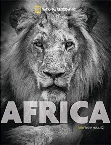 africa.frank.mulliez