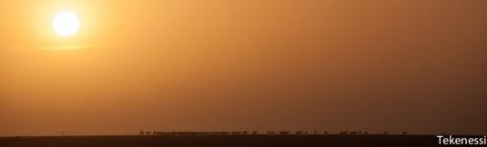 n259/tchad.ennedi.trek.2012.16.jpg