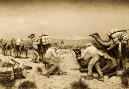 n268/last.camel.charge.2.jpg