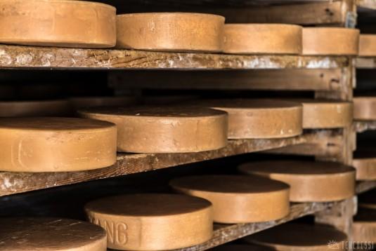 n356/nepal.fromage.yak.nak.5.jpg