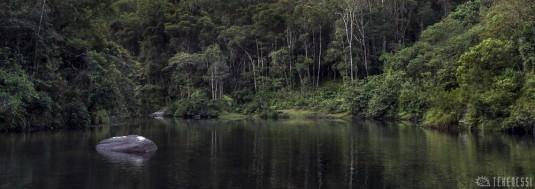 n411/madagascar.corridor.forestier.zafimaniry.boby.tanale.33.jpg