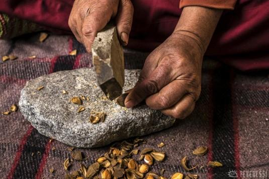 n421/ladakh.leh.abricot.amande.10.jpg