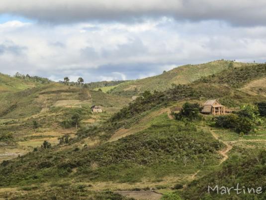 n459/corridor.forestier.trek.madagasar.59.jpg