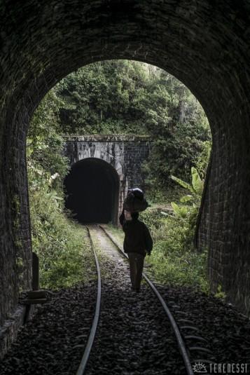 n479/corridor.forestier.trek.madagasar.106.jpg