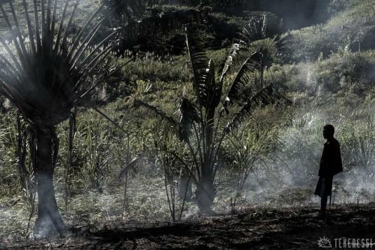 n483/corridor.forestier.trek.madagasar.177.jpg