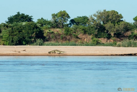 n532/parc.tsingy.trek.madagascar.bemaraha.part.1.11.jpg