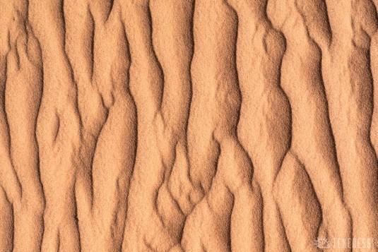 n600/mongolie.sable.gobi.3.jpg