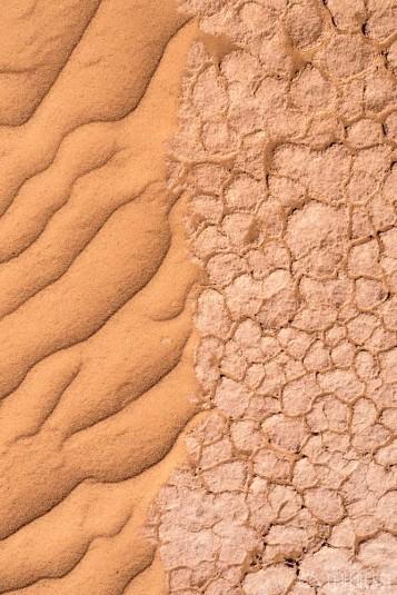 n600/mongolie.sable.gobi.5.jpg