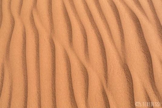 n600/mongolie.sable.gobi.6.jpg