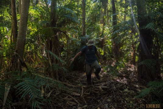 n660/Makay.trek.Madagascar.2017.exploration.8.jpg