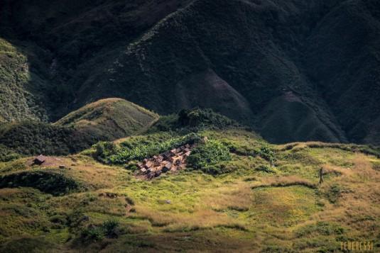 n661/Sakaleona.trek.Madagascar.Tanalana.Zafimaniry.hauts.plateaux.10.jpg