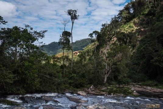 n661/Sakaleona.trek.Madagascar.Tanalana.Zafimaniry.hauts.plateaux.8.jpg