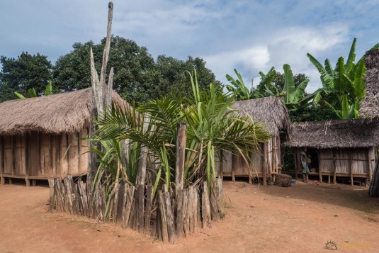 n664/Tangalamena.Madagascar.trek.5.jpg