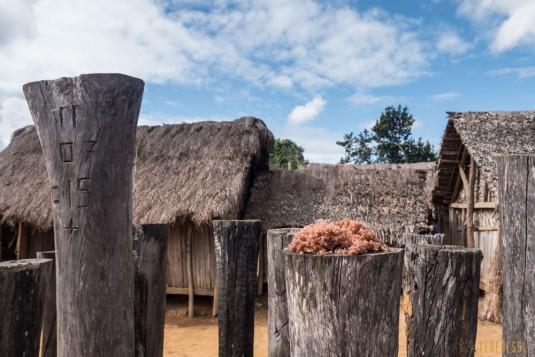 n664/Tangalamena.Madagascar.trek.8.jpg