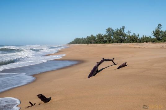 n667/Madagascar.Canal.Pangalane.sud.trek.Sakaleona.15.jpg