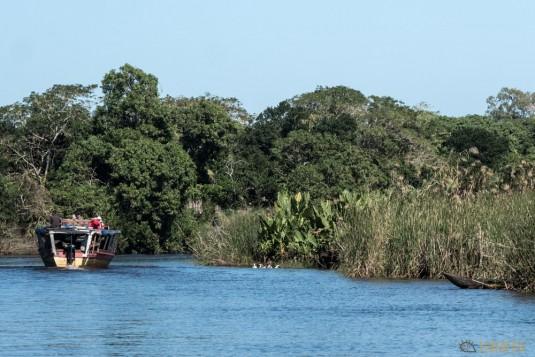 n667/Madagascar.Canal.Pangalane.sud.trek.Sakaleona.20.jpg