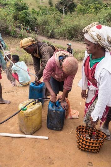 n668/Madagascar.marches.legumes.viandes.rhum.1.jpg