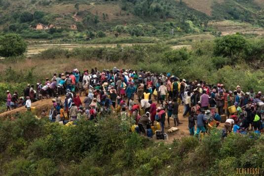 n668/Madagascar.marches.legumes.viandes.rhum.2.jpg