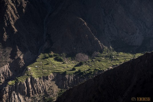 n708/Trek.Nanga.Parbat.Pakistan.Mazeno.pass.Diamir.8.jpg