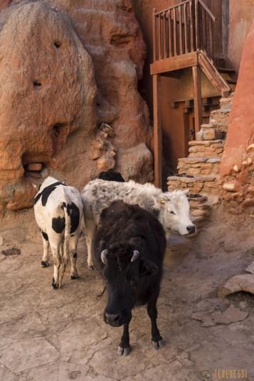 n726/Lo.Manthang.Mustang.Nepal.3.jpg