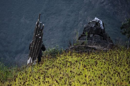 n737/Nepal.Rolwaling.Yalung.la.trek.1.jpg