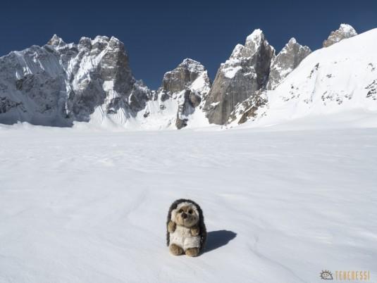 n743/Nepal.Pakistan.Shimshal.Hispar.Biafo.Snow.lake.10.jpg